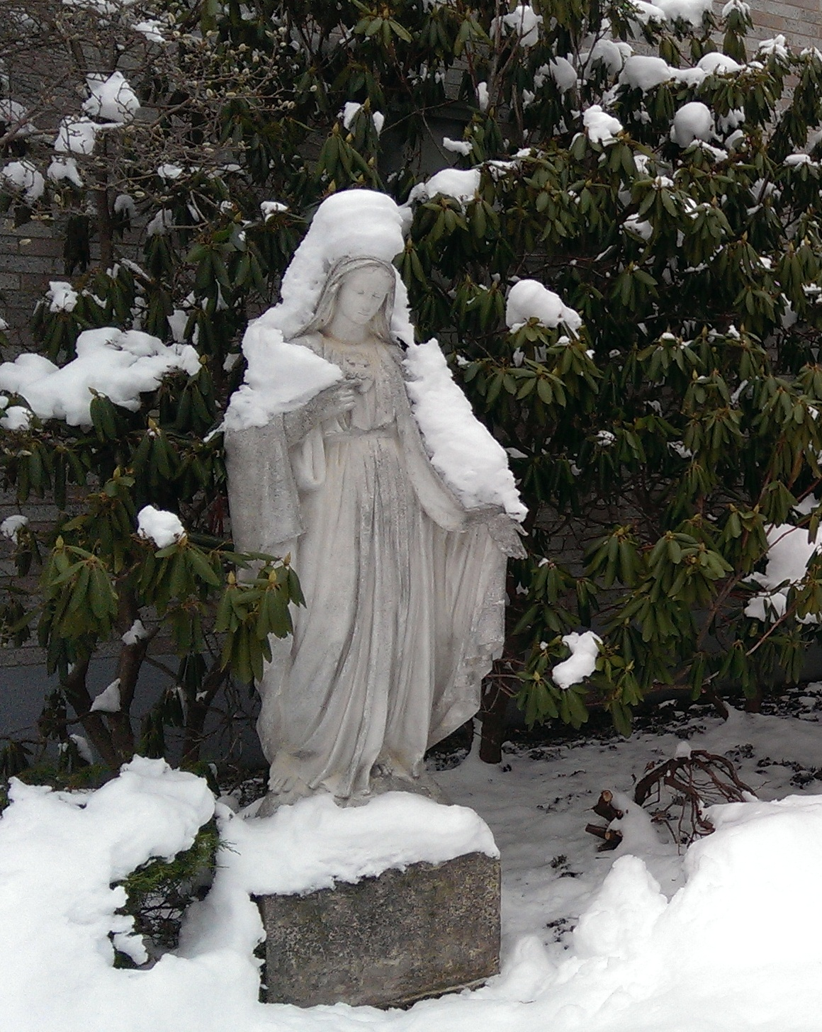 Mary with her mantle of snow.